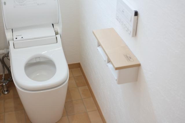 日本のトイレは世界一?外国人から見た、きれい好きな日本人