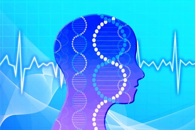 睡眠のゴールデンタイム!時間帯と成長ホルモンの関係性