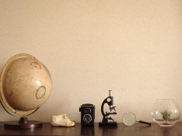 地球儀がおしゃれなインテリアに!おすすめ地球儀をご紹介