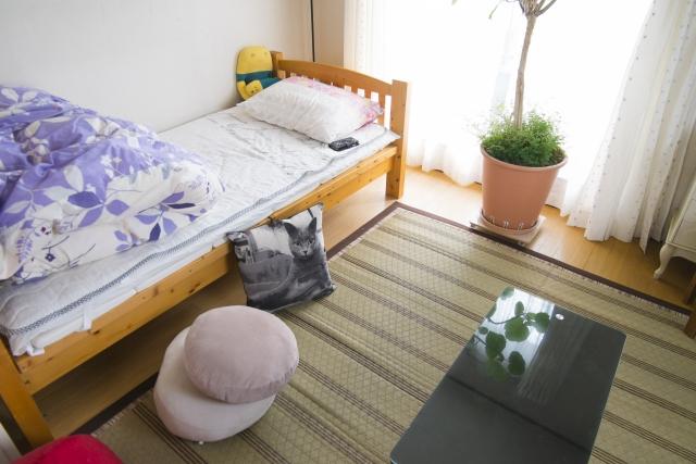 「ベッド」や「すのこ」に小さな虫が!その種類や対処法は?