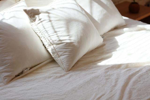 人気のお布団5選!防ダニ効果のあるおすすめのお布団とは?